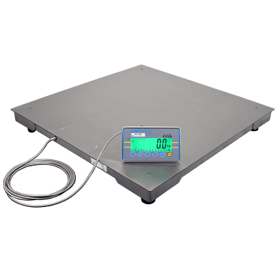 Stainless Steel PT Platform Scale with AE402