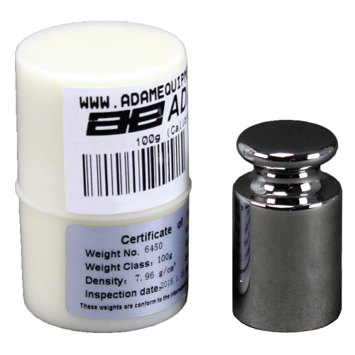 E2 100g Calibration Weight