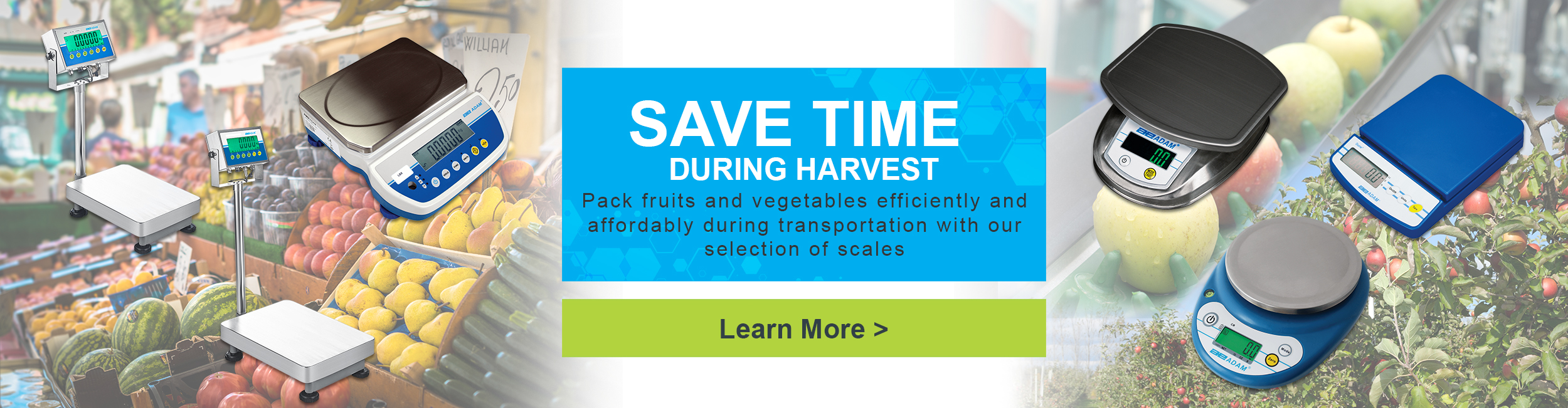 Save Time During Harvest. Pack fruits and vegetables efficiently and affordably during transportation with our selection of scales